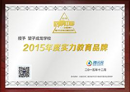 2015年度实力教育品牌